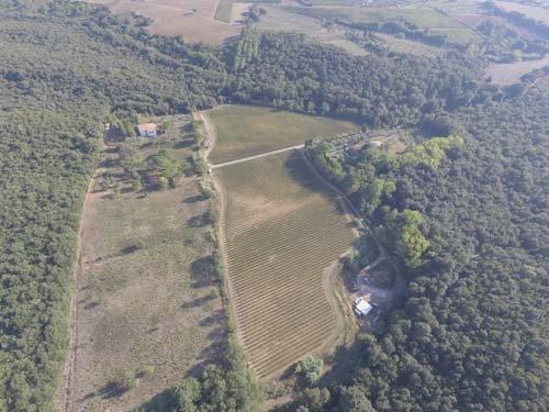 campi vigneti - vista da un elicottero