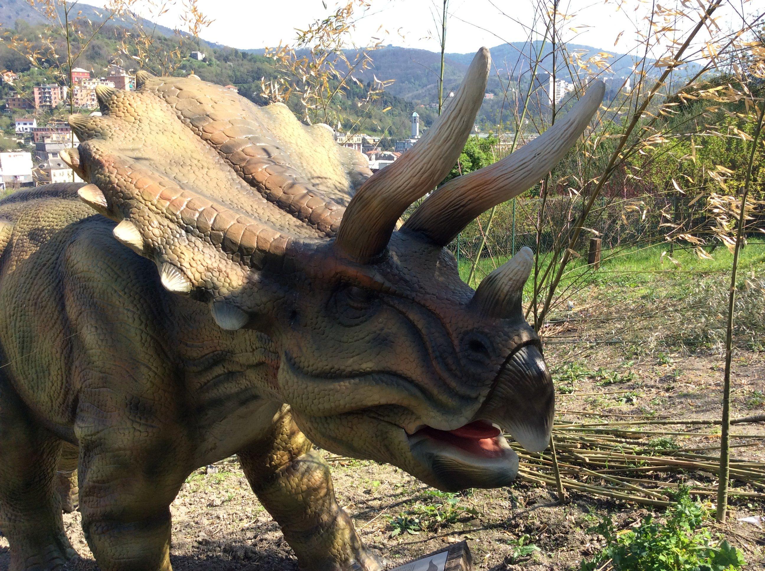 Modello di un Triceratopo