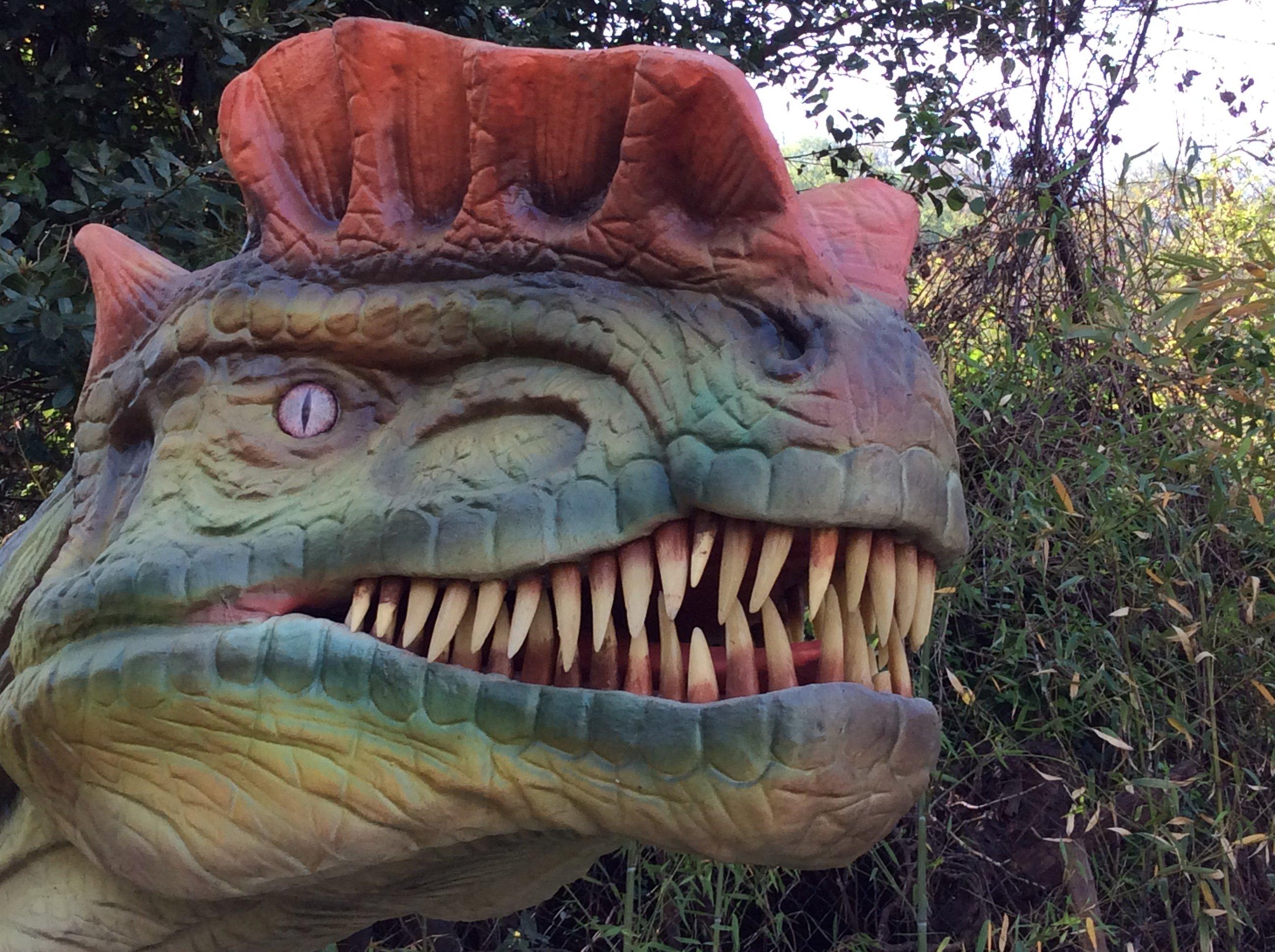 Primo piano di un  dinosauro carnivoro