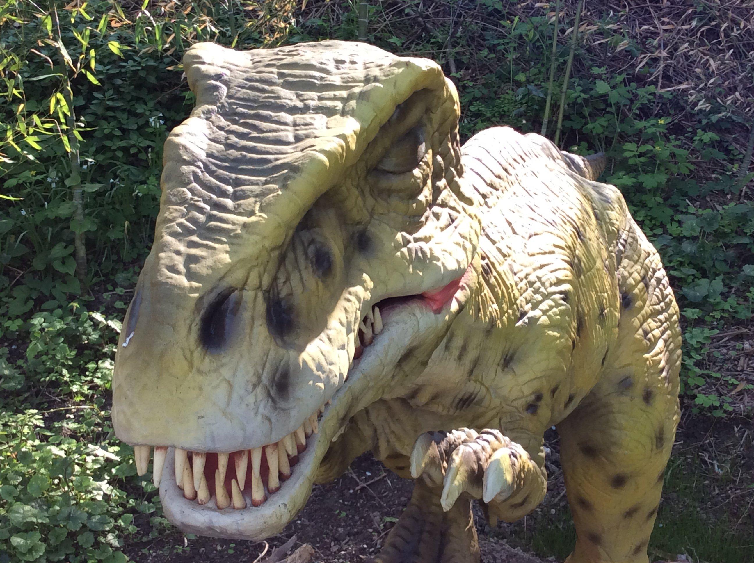Modello di un Tirannosaurus Rex