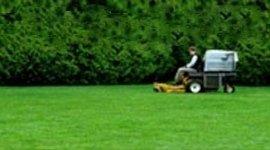 manutenzione aree a verde