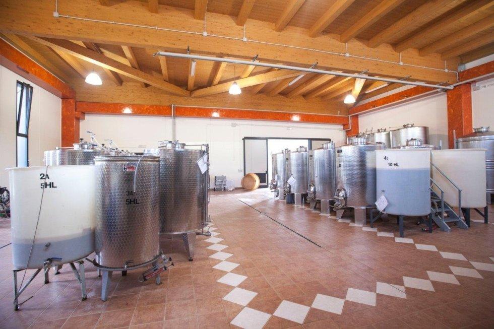 Produzione propria vini