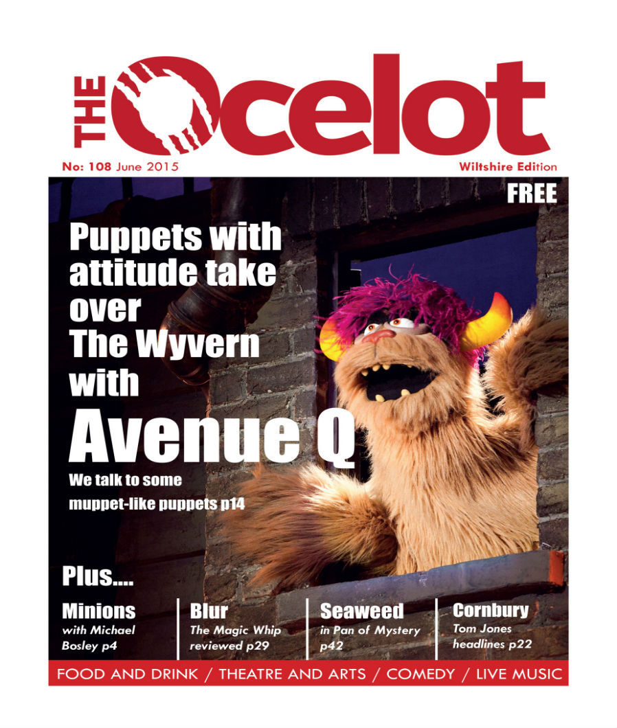 The Ocelot help businesses of all sizes with effective advertising and marketing in Swindon, Wiltshire