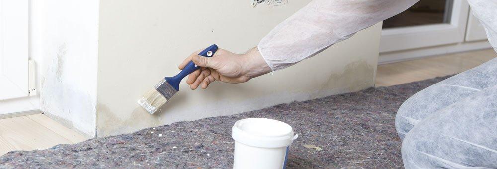 Muffa di risalita fabulous umidit di risalita muffa - Come eliminare la muffa dalle pareti di casa ...