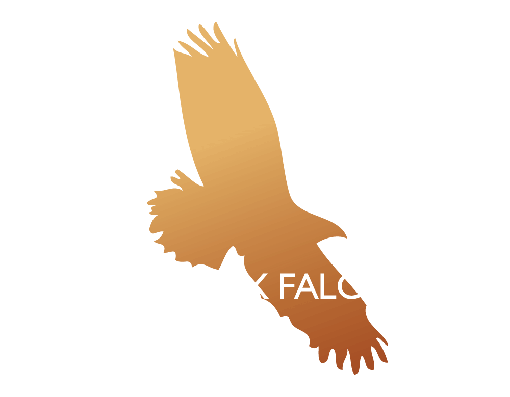 West Sussex Falconry