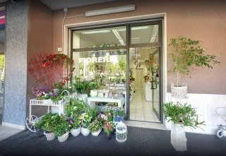 negozio di fiori ravenna
