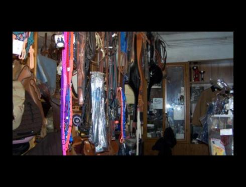 Giacche e cinghie per cavallo