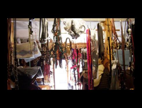 Selleria e abbigliamento equitazione