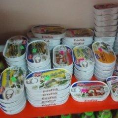 sardine, aringhe, acciughe