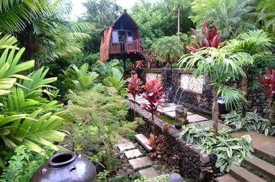 Tropical hut landscape