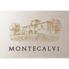Vini Azienda Agricola Montecalvi