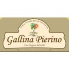 Vini Azienda Agricola Gallina Pierino