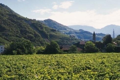 Mayr Unterganzner - Alto Adige