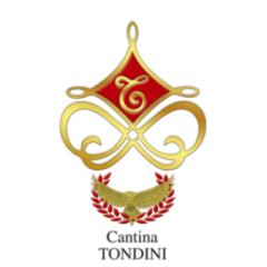 Vini Tondini