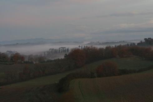 Il Paradiso di Frassina - Montalcino