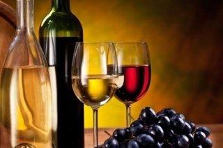 Vini bianchi e rossi