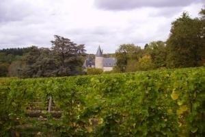 Vino Patrice Moreux