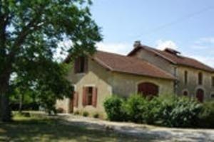 Vendita vini di Chateau Salins