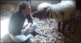 visita pony