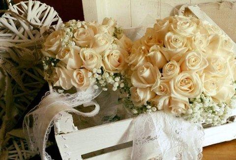 confezioni fiori, fiori recisi, vendita fiori Vezzano Ligure