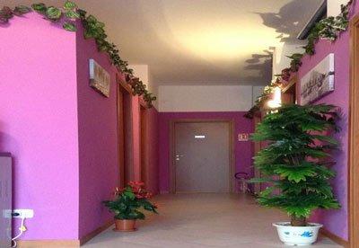 un corridoio con pareti viola,  una pianta, edera decoratriva ai bordi del soffitto e un vaso di fiori rossi