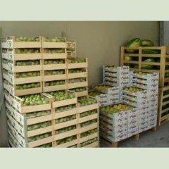 verdura all