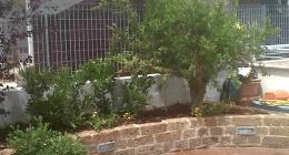giardini, terrazzi