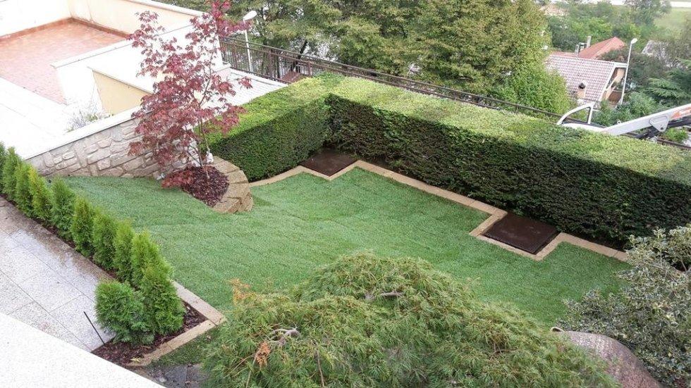 Manutenzione giardini belluno vivaio martinelli servizi for Cespugli giardino