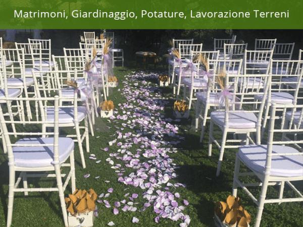 allestimento matrimoni lavori giardinaggio raccolta olive uva lavorazioni terreno potatura