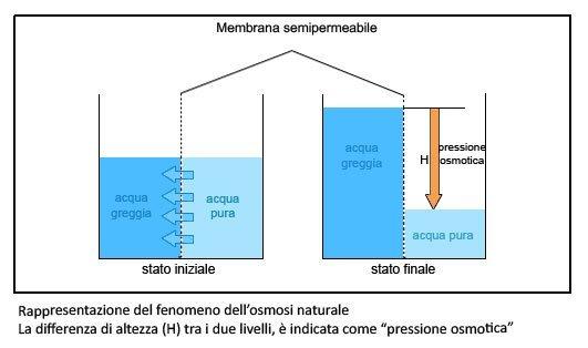 Spiegazione della osmosi natural