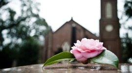 addobbi funebri, affissione avvisi di lutto, trasporto salma