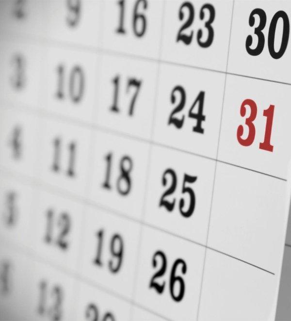 vendita calendari