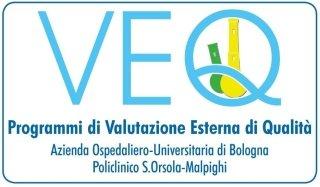 Logo VEQ