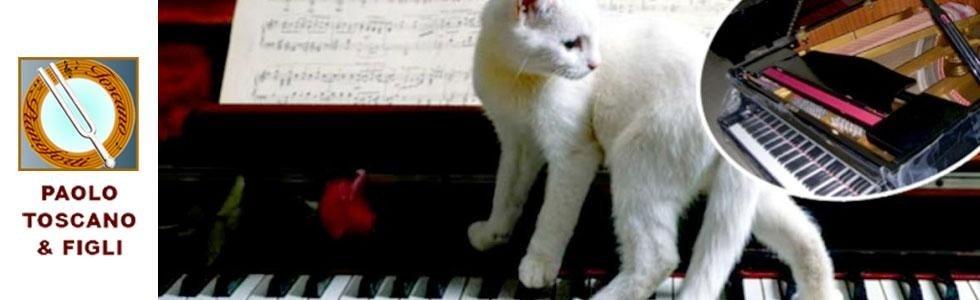 vendita pianoforte
