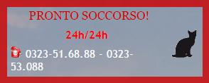 logo del Pronto Soccorso Veterinario con il numero di telefono
