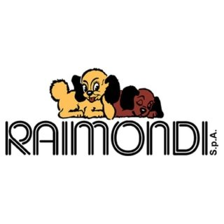 Raimondi Spa
