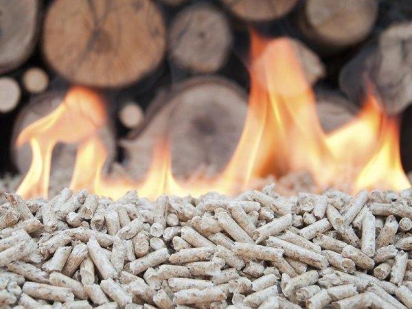 vendita legna e pellets