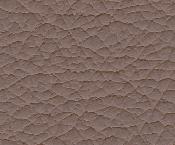 Mushroom puccini leather