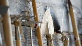 alberi da vivaio, articoli per il giardinaggio, bulbi per floricoltura