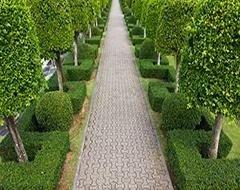 servizi di giardinaggio torino