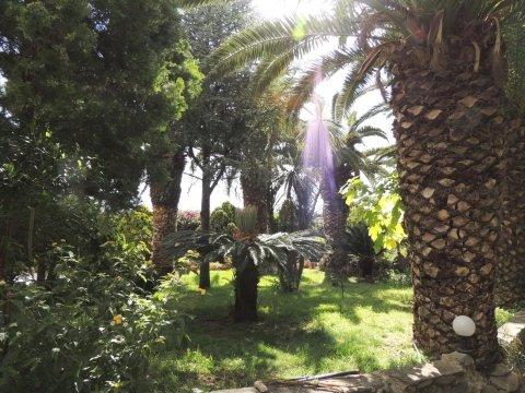 giardino villa elsa