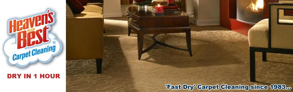 What can Heaven's Best clean for you? Carpets, Tile and Grout, Hardwood Floors, Upholstery?