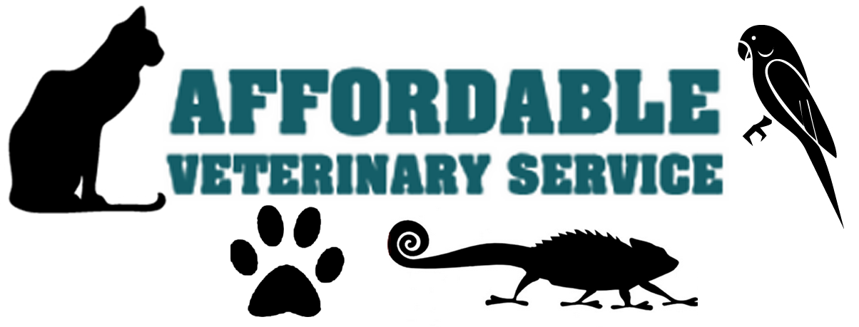 Veterinary Services Hornell, NY