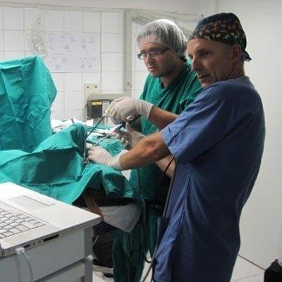 veterinari durante un operazione