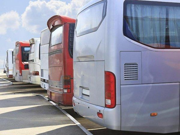 Noleggio autobus da 50 posti