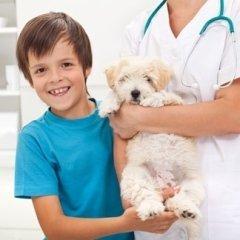adotta un cucciolo