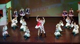 Spettacoli di danza classica, scuola di danza, schiaccianoci