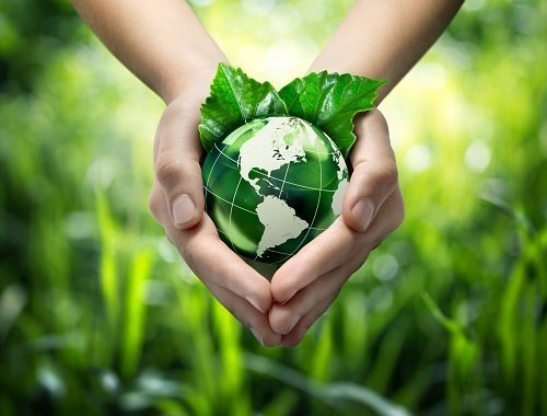 mani che reggono un frutto verde a forma del pianeta Terra