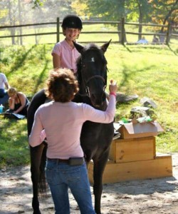 Horse Riding Lessons Westchester, NY