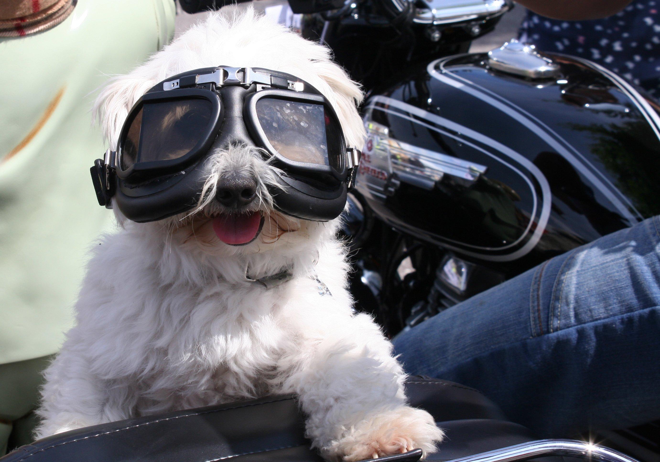 Motorcycle Tours Ireland